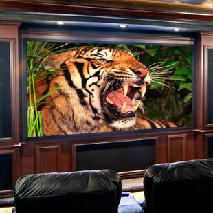 Clarion Fixed Frame Projection Screen