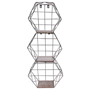 Bourne Hexagon Metal Wire 3 Piece Wall Shelf Set (Set of 3)