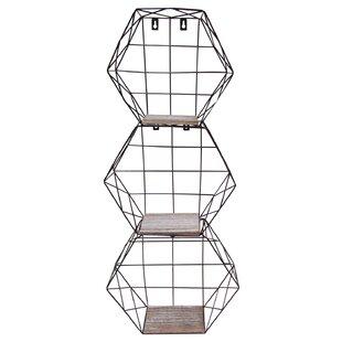 Bourne Hexagon Metal Wire 3 Piece Wall Shelf Set (Set of 3)