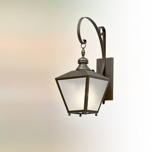 Darby Home Co Sybil 1-Light LED Outdoor Wall Lantern