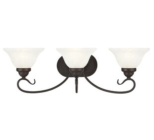 Read Reviews Lewisboro 3-Light Vanity Light By Darby Home Co