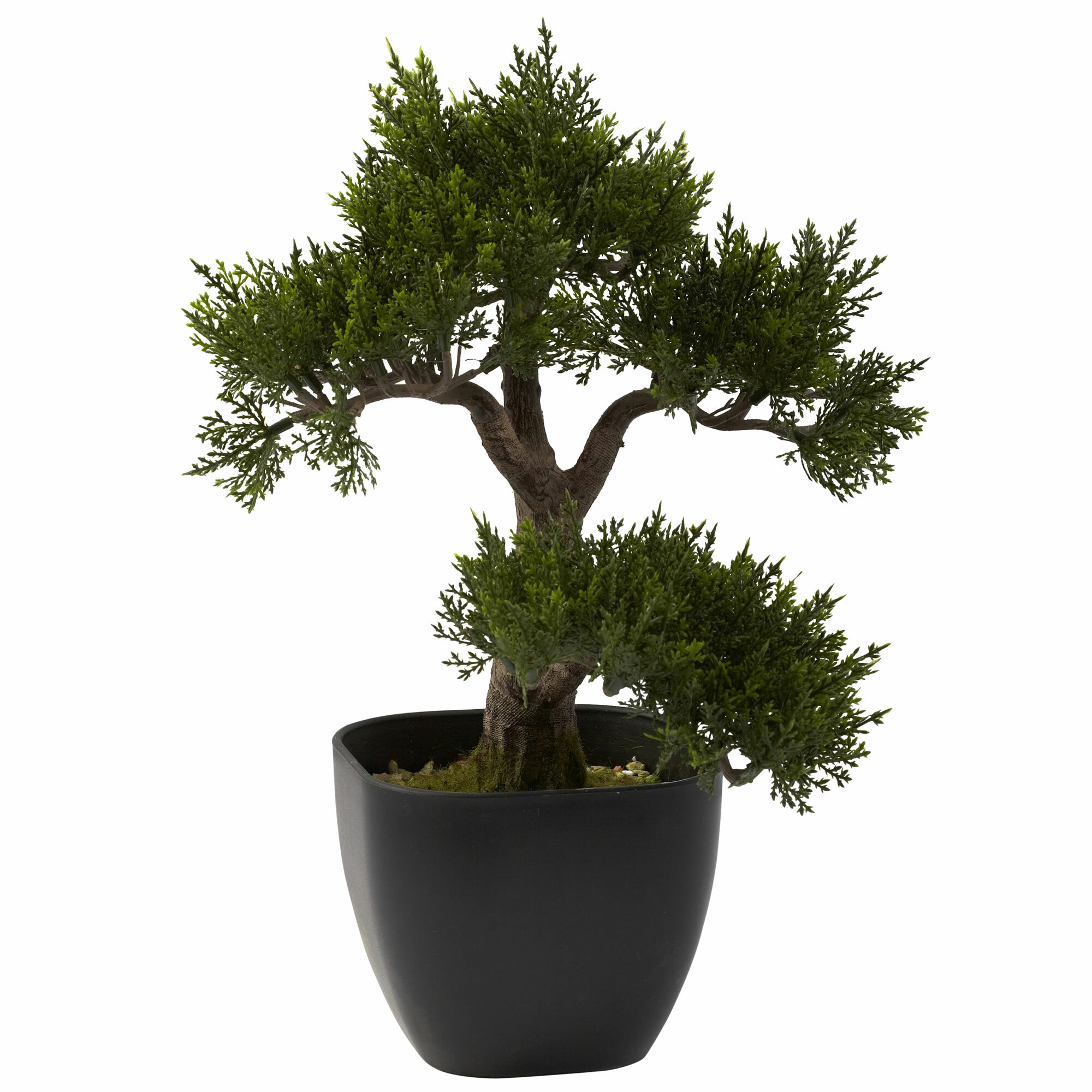 World Menagerie 11 Artificial Bonsai Tree In Planter Reviews Wayfair