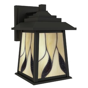 Read Reviews Ethen 1-Light Outdoor Wall Lantern By Darby Home Co
