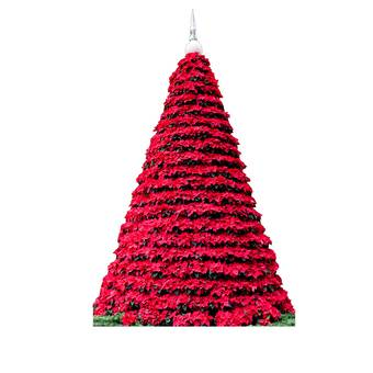 Cardboard Christmas Tree.Poinsettia Christmas Tree Cardboard Standup