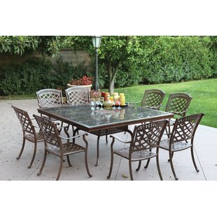 Alcott Hill Thompson 9 Piece Powder-Coated Dining Set with Cushions