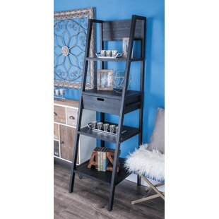 Review Ladder Bookcase by Cole & Grey