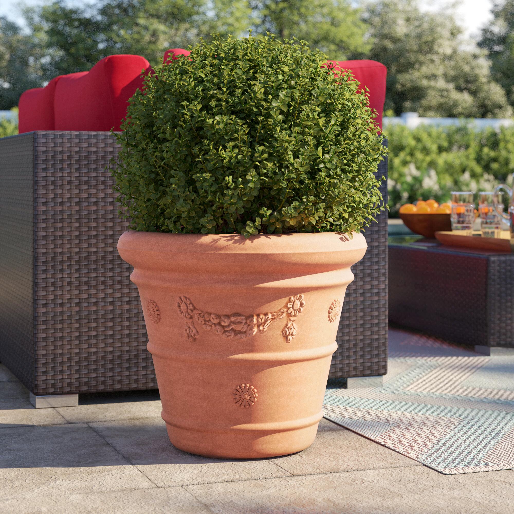 Sol 72 Outdoor Dekland Resin Pot Planter Reviews Wayfair