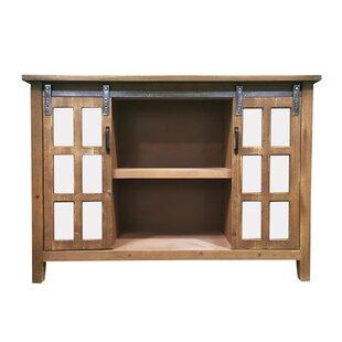 Philpott Slider 2 Door Accent Cabinet by Gracie Oaks