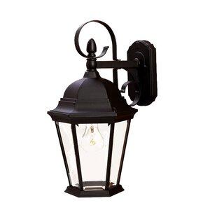 Prangins 1-Light Outdoor Wall Lantern