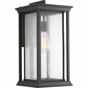 Samanda 1-Light Outdoor Wall Lantern