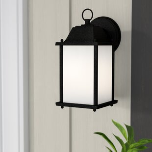 Wynleigh 1-Light Outdoor Wall Lantern by Beachcrest Home