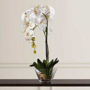 artificial orchids you'll love | wayfair