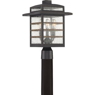 Vieira 3-Light Lantern Head by Gracie Oaks