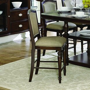 Ephraim Dining Chair (Set of 2) Alcott Hill