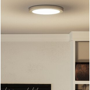 Orren Ellis Reider 1-Light LED Flush Mount