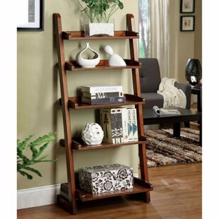 Paez Transitional Style Ladder Bookcase