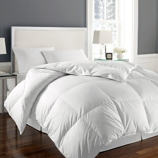 All Season Down Alternative Polyester Comforter By Alcott Hill