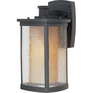 Clearance Bissonet 1-Light Outdoor Wall Lantern By Loon Peak