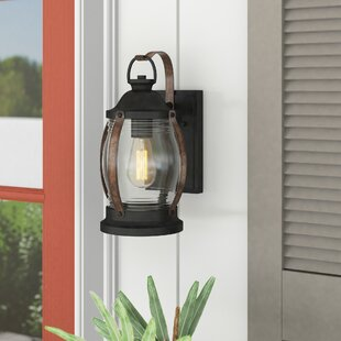 Rual 1-Light Outdoor Wall Lantern