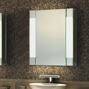 Reviews 27.5 x 19.75 Surface Mount Medicine Cabinet with Lighting By Fab Glass and Mirror