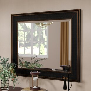 Big Save Bathroom/Vanity Mirror By Darby Home Co