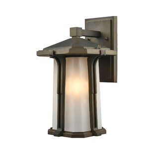 Brayden Studio Dima Outdoor Wall Lantern