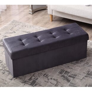 Mirabal Foldable Tufted Storag..