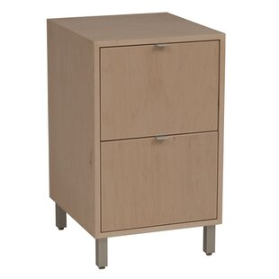 Southville 2-Drawer File Cabinet