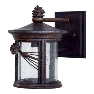 Abbey Lane 1-Light Outdoor Wall Lantern