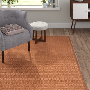 Saddle Terracotta Rug by Hazelwood Home