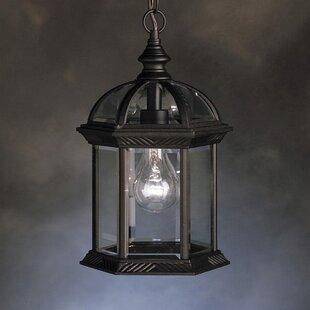 Caroline 1-Light Outdoor Hanging Lantern