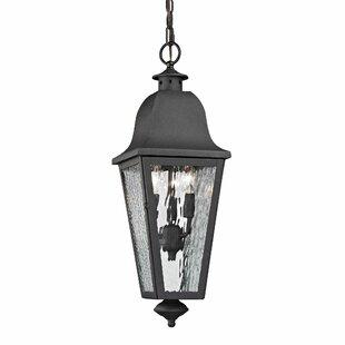 Alcott Hill Hammontree 3-Light Outdoor Hanging Lantern