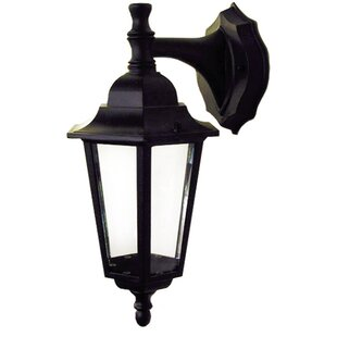 Affordable Lucas 1-Light Outdoor Wall Lantern By Whitfield Lighting