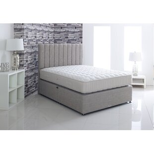 Pickle Divan Bed By 17 Stories