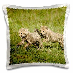 Kenya, Masai Mara Game Reserve, Cubs Pillow Cover f6d8b9eed2