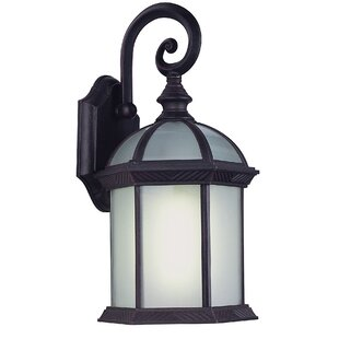 Buy luxury Diggs 1-Light Outdoor Wall Lantern By Alcott Hill