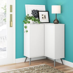 Raynham 2 Door Accent Cabinet by Zipcode Design