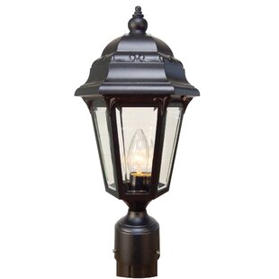 Astor 1-Light Lantern Head By Special Lite Products Outdoor Lighting