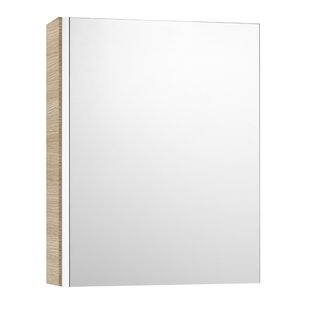 Mini 45cm X 60cm Surface Mount Mirror Cabinet By Roca
