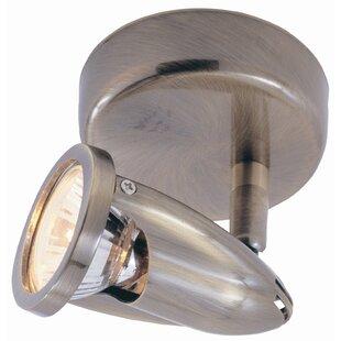 TransGlobe Lighting Modern Track Lights 1-Light Semi Flush Mount