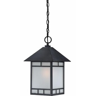 Millwood Pines Caitlin 1-Light Outdoor Hanging Lantern