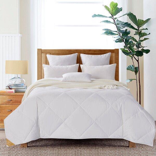 Light Weight Summer Comforter Wayfair