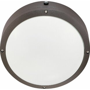 Canora Grey Margery 2-Light LED Outdoor Flush Mount