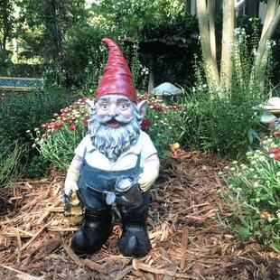Garden Gnomes You'll   Wayfair on