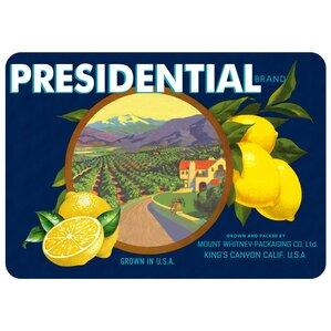 Twila Presidential Lemons Kitchen Mat