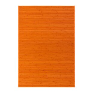 Havana Bamboo Slat Orange Rug by World Menagerie
