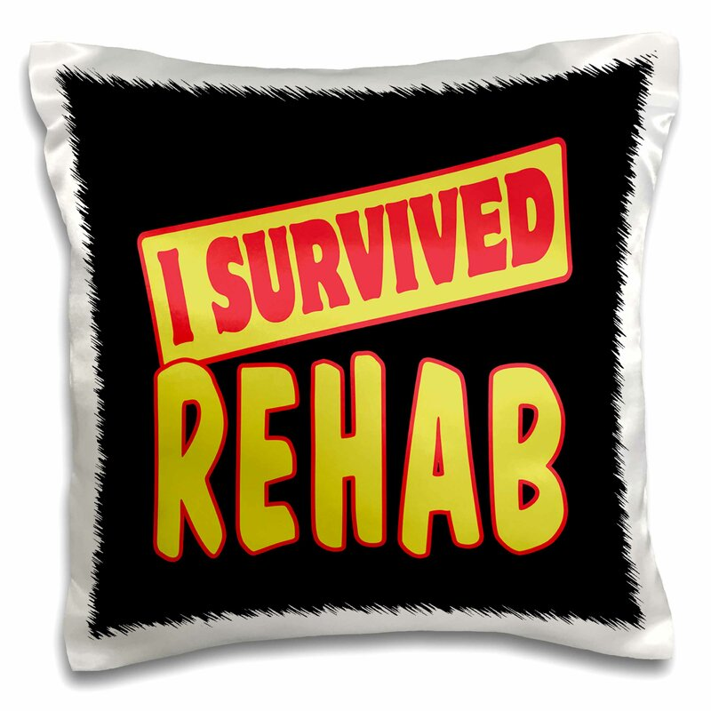3drose I Survived Rehab Survival Pride And Humor Design Pillow Cover Wayfair