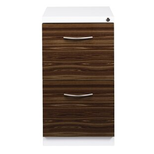 Symple Stuff Ziegler Deep Pedestal 2-Drawer Mobile Vertical Filing Cabinet