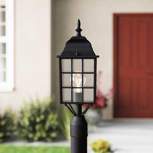 Ivery Outdoor 1-Light Lantern Head by Astoria Grand