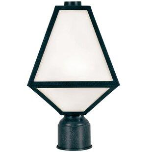 Hankerson Outdoor 1-Light Lantern Head By Brayden Studio Outdoor Lighting